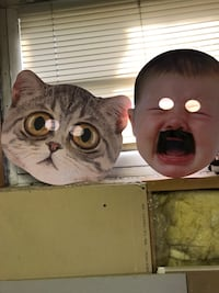 CAT AND BABY FACE MASKS FOR RAVES! Edmonton, T6C 2W6