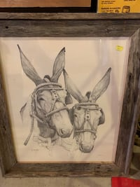 Mule picture hand drawn