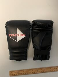 Century boxing gloves Paramount, 21742