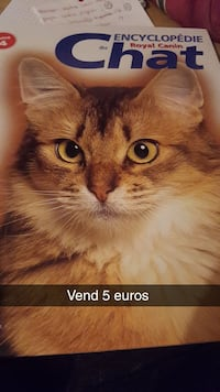 Livre chat Reims