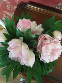 white and pink petaled flowers 249 mi