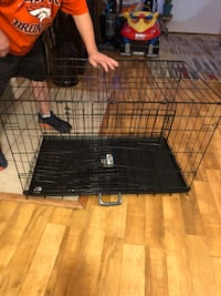 Medium size kennel  Westminster, 80234