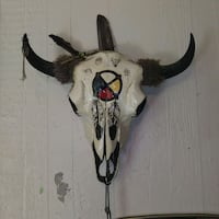 Authentic Native American Painted Cow-skull Topeka, 66605