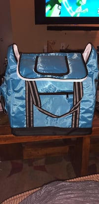 Brand new large insulated bag. La Porte, 77571