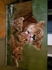 lioness with cubs painting