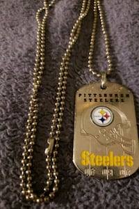 Pittsburgh Steelers dog tag Nokesville, 20181