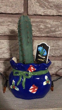 Cactus in ceramic Christmas planter
