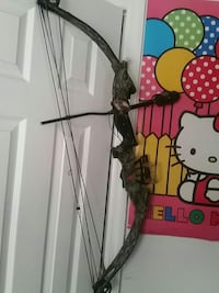 gray and green compound bow Palm Coast, 32164