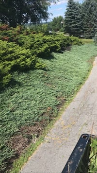 weed removal and mulch beds Middletown
