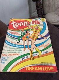 "JUST REDUCED MORE a new Tippy Teen Swingin ""zine Teen in Summer Issue Rockville"