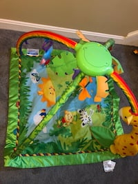 Jungle gym for babies in like new condition. Purchased new for $65. Grafton, 01519