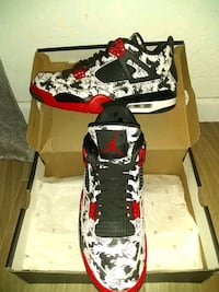 Air Jordan 4's Tattoo's 10'1/2's Phoenix, 85008