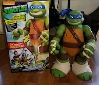 Teenage Mutant Ninja Turtles Elgin, 60120