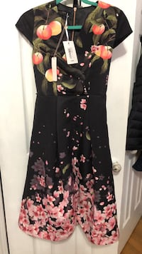 Brand new Ted Baker dress size 0 Mississauga, L4Y