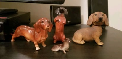 Large dachshund collection