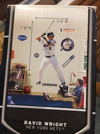 Only giant David Wright fathead in box other stickers used Springfield, 07081