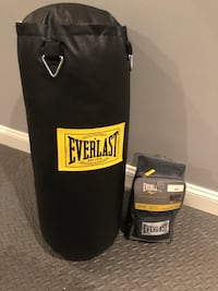 Everlast 50lb Training Bag with 14 oz Training Gloves Leesburg, 20176