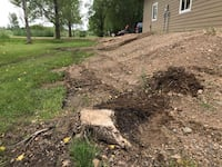 Stump Grinding - Tree Removal - Landscaping Milan, 56262