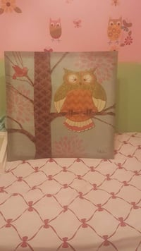 Owl picture c/p no holds Knoxville, 37921