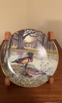 Decorative waterfowl plates