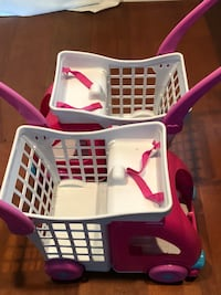 Girls shopping carts (2)