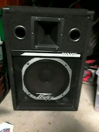 "pevey 12"" woofer (i think)"