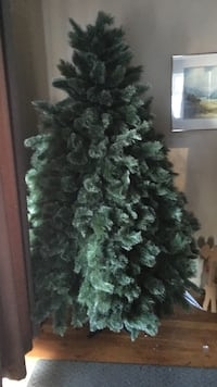 Green christmas tree Peachland, V0H 1X4