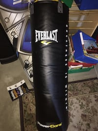 everlast leather 100p punching bag comes with a set of gloves  Saskatoon, S7S 1B5