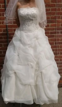 Champaign lace wedding gown Redford Charter Township, 48239