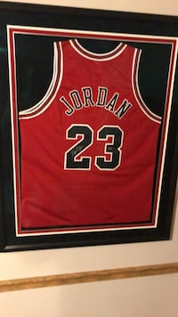Red and black chicago bulls 23 jersey Yorkville, 60560