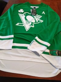 Special edition pens jersey  North Versailles, 15137