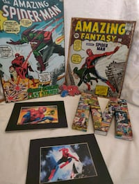Spider-Man collection. Boston, 02128