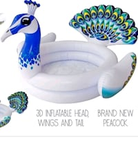 New peacock swimming pool  Knoxville