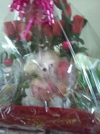 red rose and white teddy bear gift set Dallas, 75224