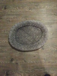 Cat/small dog bed Abbotsford, V2S 2N1