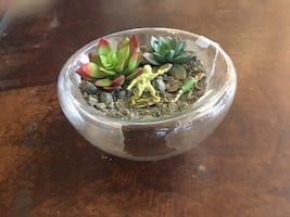 Succulent or Candle Bowl