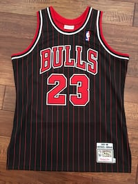 Michael Jordan Authentic Mitchell & Ness Jersey 1995-96 Alternate Pinstripe