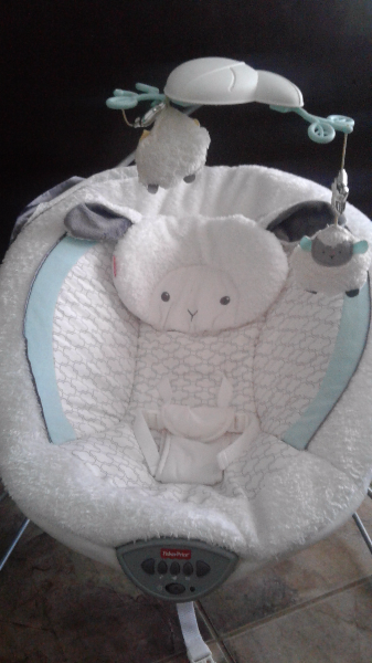 baby's white Fisher-Price deluxe bouncer AJAX