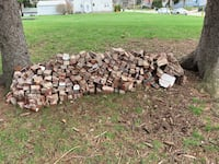 Free brick for fill or a project Akron, 44312