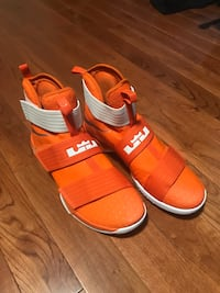 *BRAND NEW* LEBRON SOLDIER 10 NIKE BASKETBALL SHOES (size 13) Mississauga, L5M 3P2