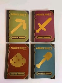 Minecraft books Bethesda, 20817