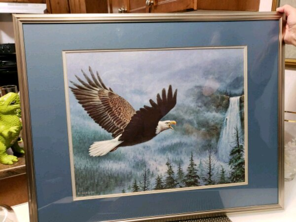 white and brown bald eagle painting