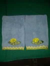 Pair of light blue guest hand towels
