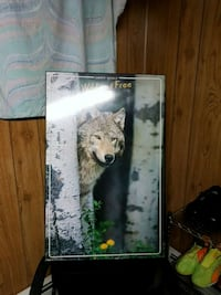 VERY LARGE WOLF PICTURE Brampton, L6S 2L7