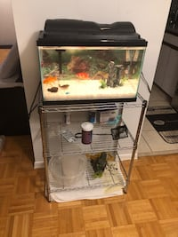 Fish and Fish Care