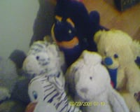 Set of 12 Stuffed Animals Arlington