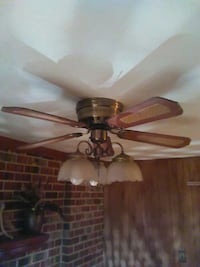 Hunter Bay 5-bladed ceiling fan with 3 lights $75 Fairfax, 22032