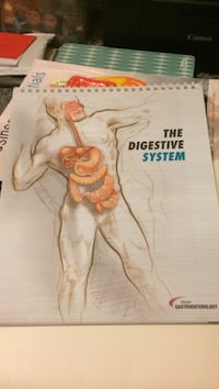 The Digestive System book