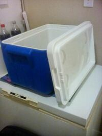 white and blue ice chest