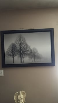 Grayscale photo of trees with black wooden frame Champlin, 55316